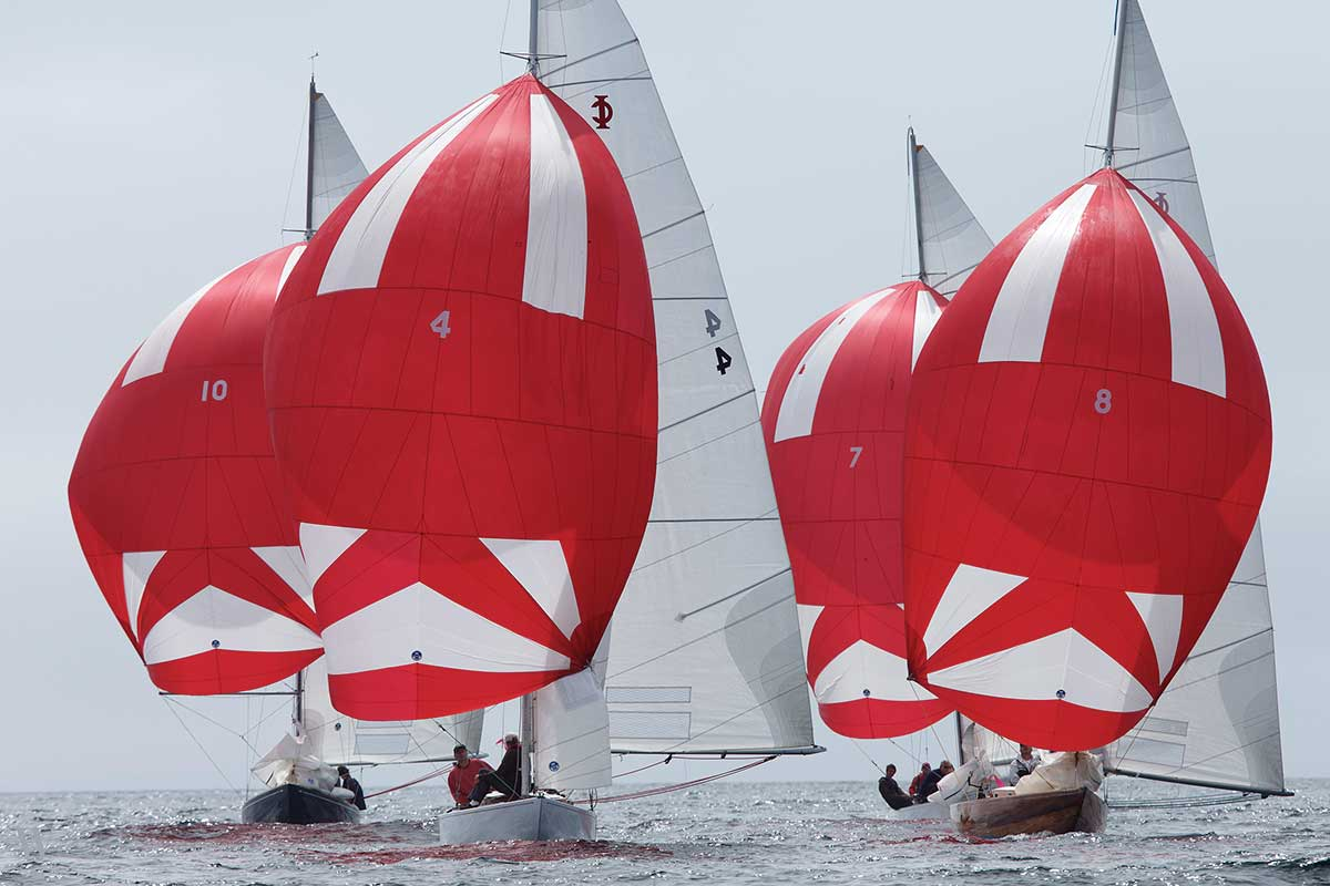 Helly Hanson Chester Race Week | Photo by Tim Wilkes