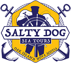 Salty Dog Sea Tours at Chester Race Week 2019